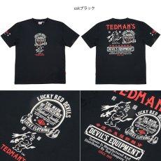 画像3: テッドマンTDSS-456半袖Tシャツ (3)